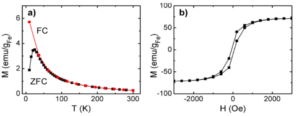 FC/ZFC magnetization curves at fixed magnetic field to study the magnetic order as a function of temperature and, for nanoparticle systems, the effect of nanoparticle size and size distribution; b) Hysteresis loops to study the effect of magnetic field on the magnetization and to measure the coercive field. (Istituto di Struttura della Materia, Roma, IT (ISM-CNR))